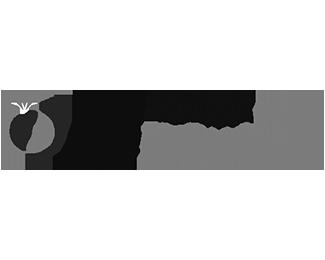 logo-salon-mariage-toulouse