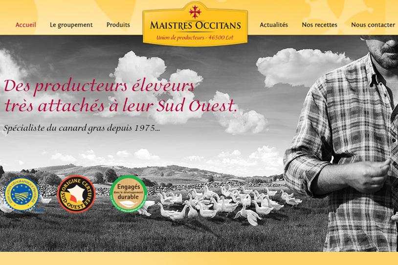 Maistres occitans - Conception site internet toulouse
